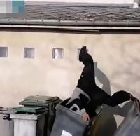 高墙往下跳滑倒扎进垃圾桶,跑酷也要注意安全