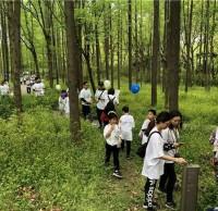 上海滨江森林公园垃圾桶减量 倡导垃圾不落地